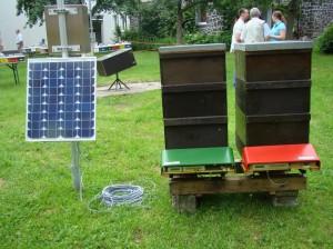 Bienen-und-Technik
